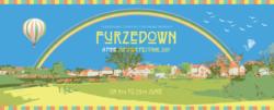 Festival advert